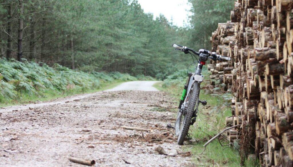 Mountain Bike With Sawn Wood Pile